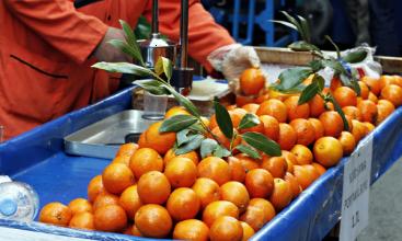 Uğur Uğurlu // Portakal suyu, Perşembe Pazarı